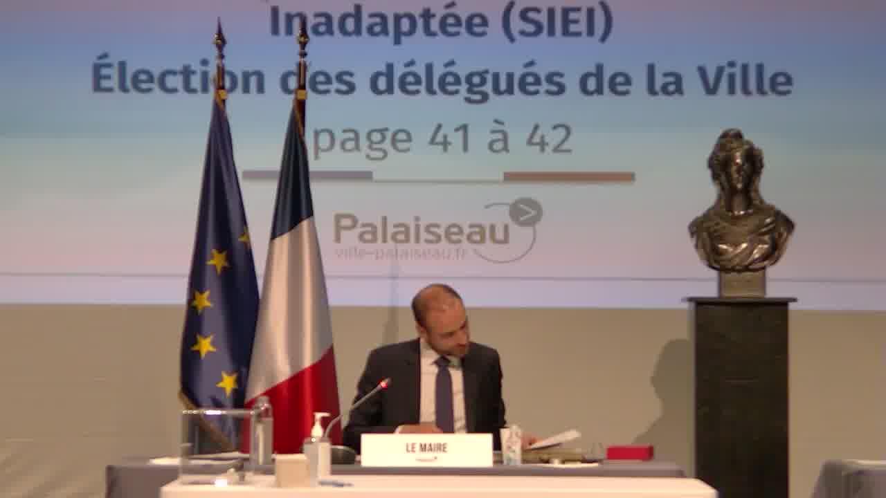 Représentation dans les associations locales et établissements publics - Union Sportive de Palaiseau (USP) - Désignation de représentants au sein du Comité Directeur